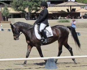 2016-03-26 LAEC Horse 371 and rider